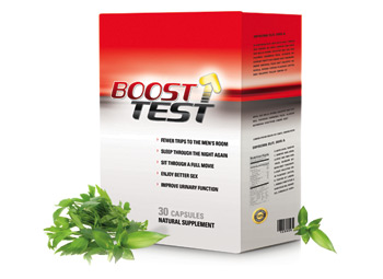 Try BoostTest Today!